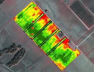 Figure 3: Normalized Difference Vegetation Index (NDVI) image taken by satellite. Pixel size is typically 10-ft x 10-ft. Source: iv